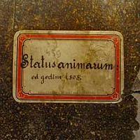 Popis pučanstva župe Mošćenice iz 1801. Albina Senčića