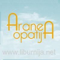 aranea_sm