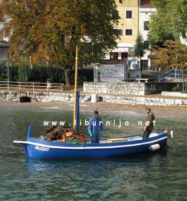 Liburnija.net: Ikarski barkajoli...
