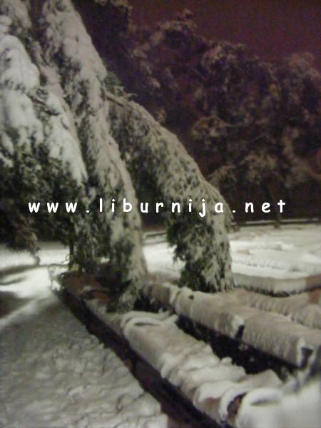 Liburnija.net: Pucanje drveća u parku Angiolina...