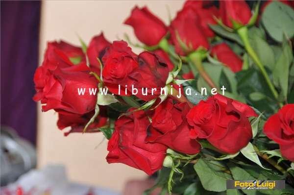 Liburnija.net: Biram ružu @ Opatija
