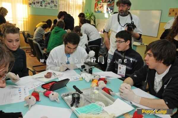 Liburnija.net: Seciranje bubrega na natjecanju iz biologije @ Temišvar