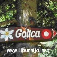 golica_sm