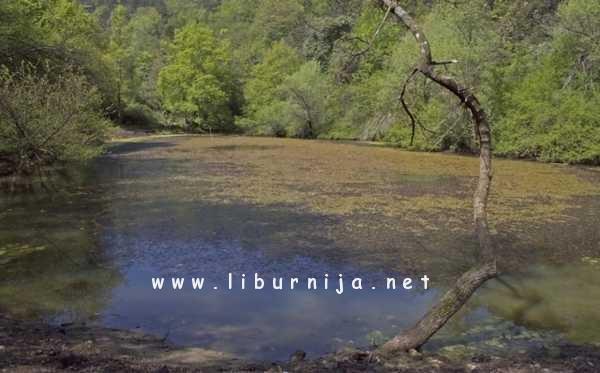 Liburnija.net: Radionica @ park prirode Učka