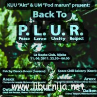 plur_sm