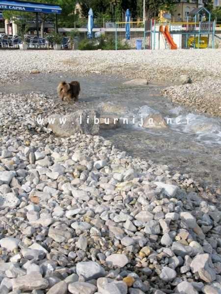 Liburnija.net: Potok preko plaže... @ Ičići