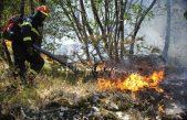 Vatrogasci apeliraju: Ne palite korov, dugotrajna suša i vjetar tvore opasnu kombinaciju za širenje požara