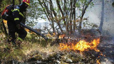 JVP Opatija: Od 1. lipnja zabranjeno je ložiti vatru na otvorenom @ Liburnija