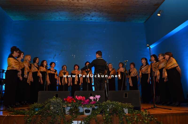 svacani_koncert_kud_ucka_matulji_hangar_2013