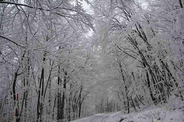 Sniježna idila na Ćićariji