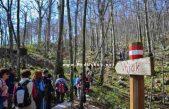 Drugi pohod po Opatijskoj planinarskoj obilaznici