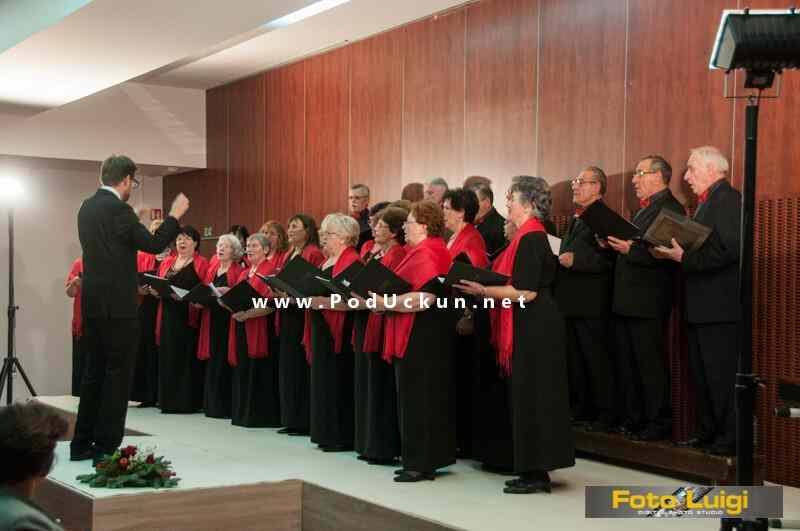 koncert_DVD_opatija_2014_proslava_45_godina
