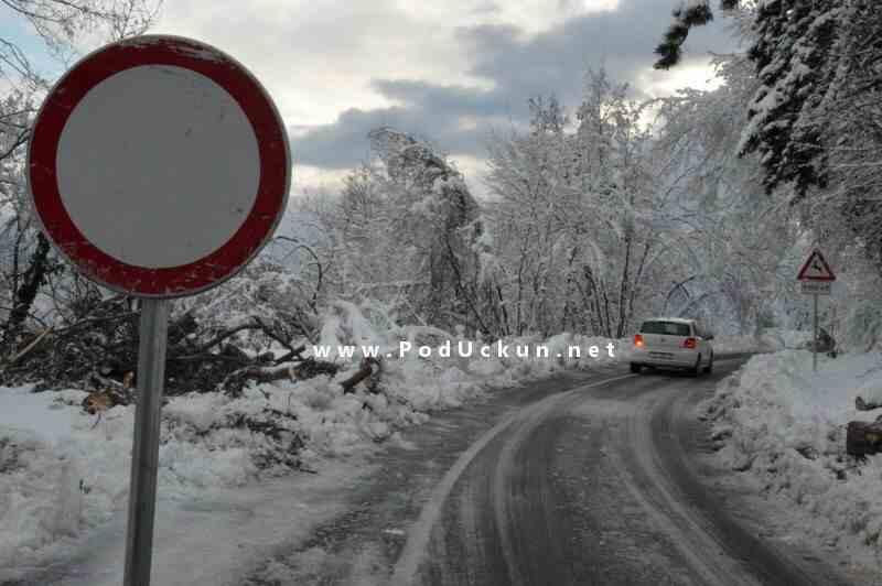 ucka_veprinac_led_snijeg_2014_2