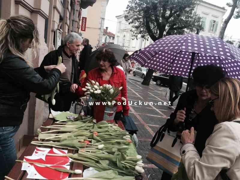 tulipani_omiljeni_cvijet_ana_rukavina_2015_opatija (1)