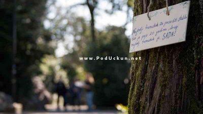 Otvoren je natječaj OKiZA – Opatijska kultura i zeleni aktivizam udruge Žmergo