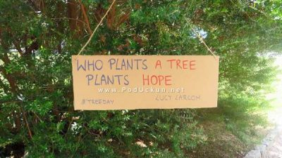 Građanska inicijativa 'Sadimo stabla po Opatiji' ima namjeru zazeleniti grad krajem listopada