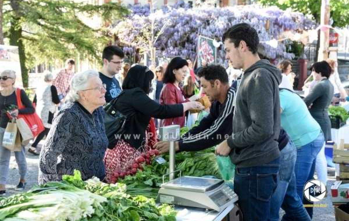 Sutra se održava novo izdanje sajma Zeleni Kastav – Organizatori najavili brojne novitete