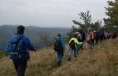 FOTO Obilježen 16. Dan istarskih planinara – Tristotinjak planinara probudilo uspavanu istarsku ljepoticu Ćićariju