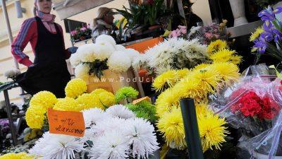 Stotine tisuća cvjetova ukrasit će grobnice najbližih