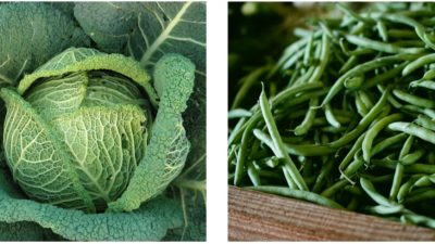 Predavanje Hranom do zdravlja i degustacija zelenih sokova @ Matulji