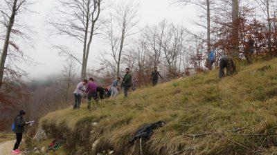 """Volonteri posadili preko 570 sadnica bukve u Žmergovoj akciji pošumljavanja Učke """"budiBUKVAlan"""""""