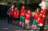 FOTO, VIDEO Trening i Božićna šetnja s Mariom Mlinarićem okupio veliki broj ljubitelja prirode i zdravog načina života @ Opatija
