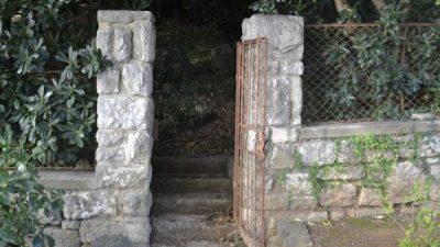 U OKU KAMERE Otvoren Park Tomaševac