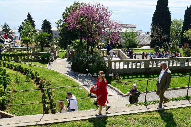 U OKU KAMERE Otvoreni Amerikanski vrtovi