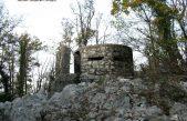 FOTO ĐIR – Po lijepoj kastavskoj šumi