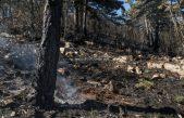 VIDEO Silovit požar opustošio učkarsko zelenilo – Izgorjelo 17 hektara makije i borovine na Obršu