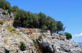 Eko desant na Cres – Ove subote velika ekološka akcija čišćenja creskih plaža u organizaciji udruge Koga briga
