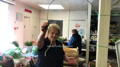 U OKU KAMERE Divovska šparoga od 3 metra na opatijskoj tržnici