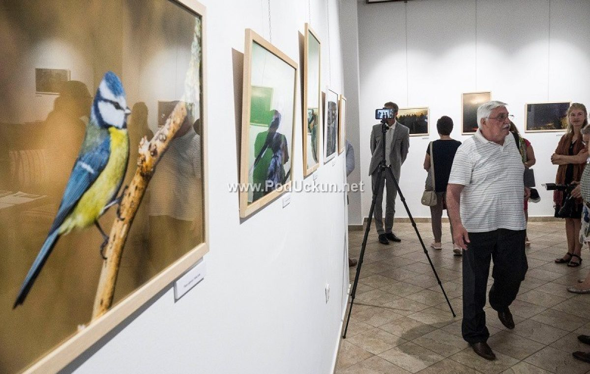 FOTO Fotograf Zoltán Makovinyi predstavio se lovranskoj publici izložbom 'Kroz moj objektiv'