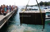 VIDEO/FOTO Vino i vruja – Tisuće butelja odležalih na morskom dnu privukle ljubitelje dobre kapljice @ Ika