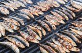 Ovog petka ne propustite gourmet manifestaciju Sardelafest @ Novigrad