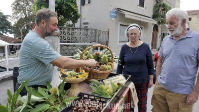 Lovran slavi marun – Iako je klasična Marunada izostala, bogat program u čast maruna obilježit će listopad