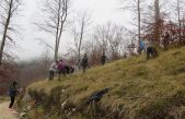 budiBUKVAlan – Udruga Žmergo proslavit će 25 rođendan sadnjom 2500 stabala bukvi