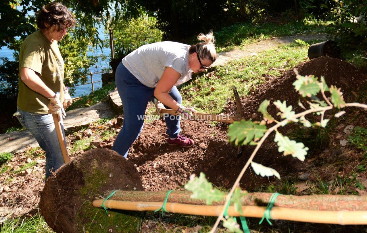 Posadi drvo, ne budi panj – Građanska akcija sadnje u Opatiji