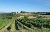 Matulji tours donose romantičnu priču o Toskani