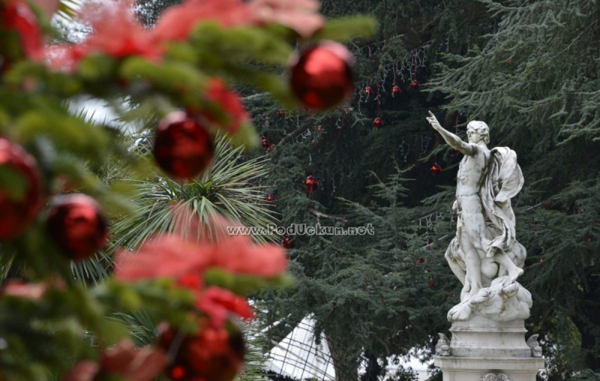 U OKU KAMERE Blagdanska atmosfera osvaja grad – Advent u Opatiji donosi čak 250 događanja tijekom šest tjedana