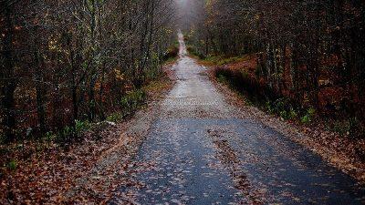 U OKU KAMERE Gotovo četiri kilometra nerazvrstane ceste Veprinac – Račja Vas pod asfaltom