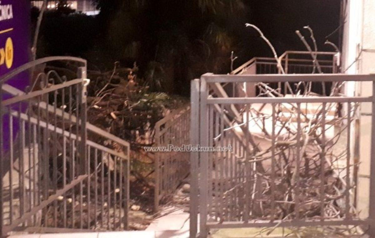FOTO Stablo iz Parka Tomaševac srušilo se na zgradu Zagrebačke banke i 'poklopilo' žensku osobu