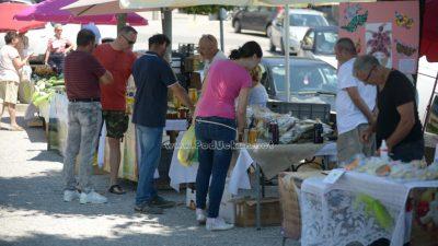 FOTO Održan 58. 'Zeleni Kastav' – Fortica je ponovo bila ispunjena zdravim, friškim i ukusnim proizvodima