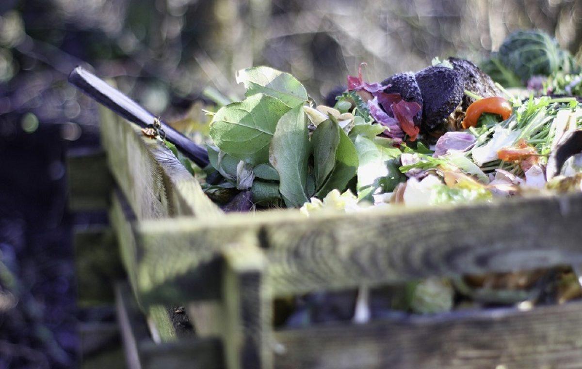 Grad Kastav dijeli 74 kompostera