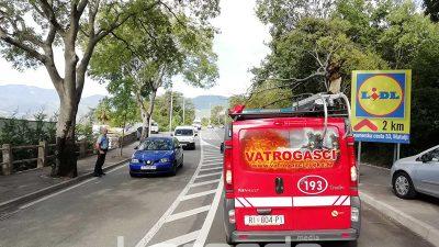 FOTO Vjetar na Biviju srušio stablo na cestu