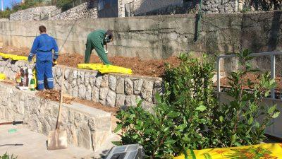 Zlatni bush – Vrijedne ruke koje brinu o vašoj okućnici i vrtu