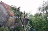 FOTO/VIDEO Jako nevrijeme praćeno olujnim vjetrom koje je pogodilo gornji matujski kraj rušilo stabla i krovove