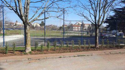 Grad Kastav ove godine bogatiji za 90 stabala i 60 novih grmova