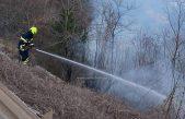 Požar je lokaliziran – Na području Veprinca gorilo nisko raslinje
